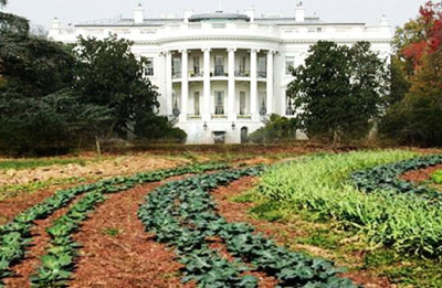 Maison Blanche, ferme organique