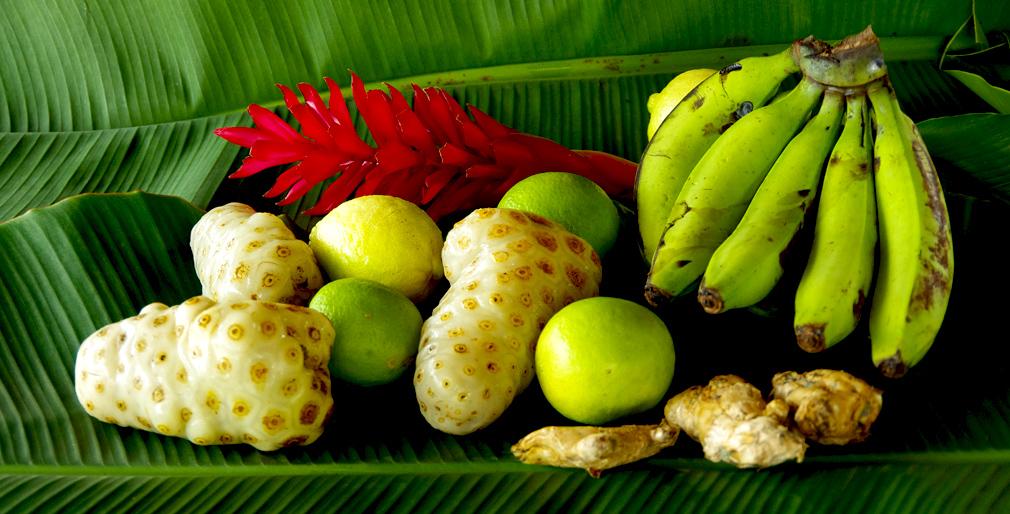 Costa Rica, jus de noni avec bananes, citrons, gingembre - Phase 1