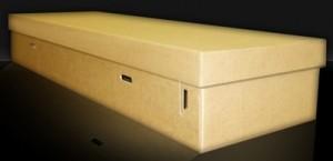 Cercueil en carton à 100 euros