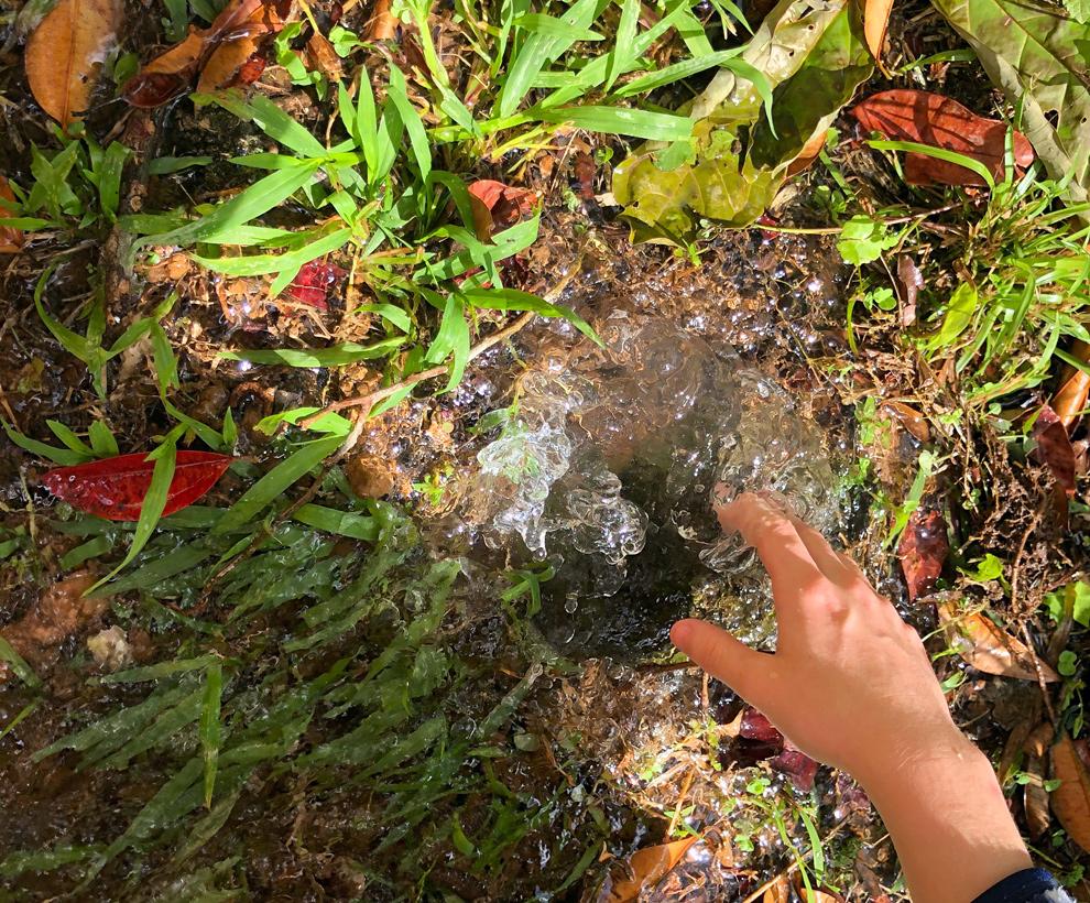 Finca - Grosse fuite d'eau à l'entrée - 1