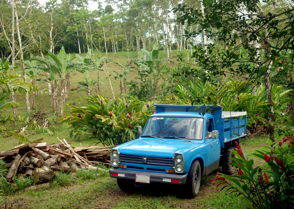 Costa Rica, Nissan Miller 1973