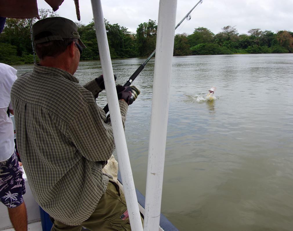 Stéphane - Pêche au Rio San Juan du Nicaragua - Mars 2015 - Vue 1