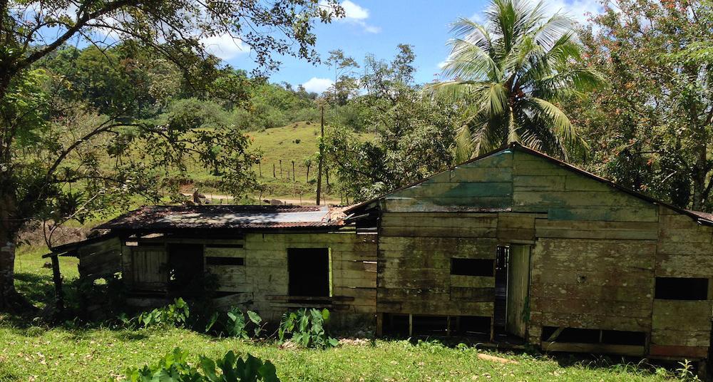 Costa Rica - Vieille maison bois en ruine - 2