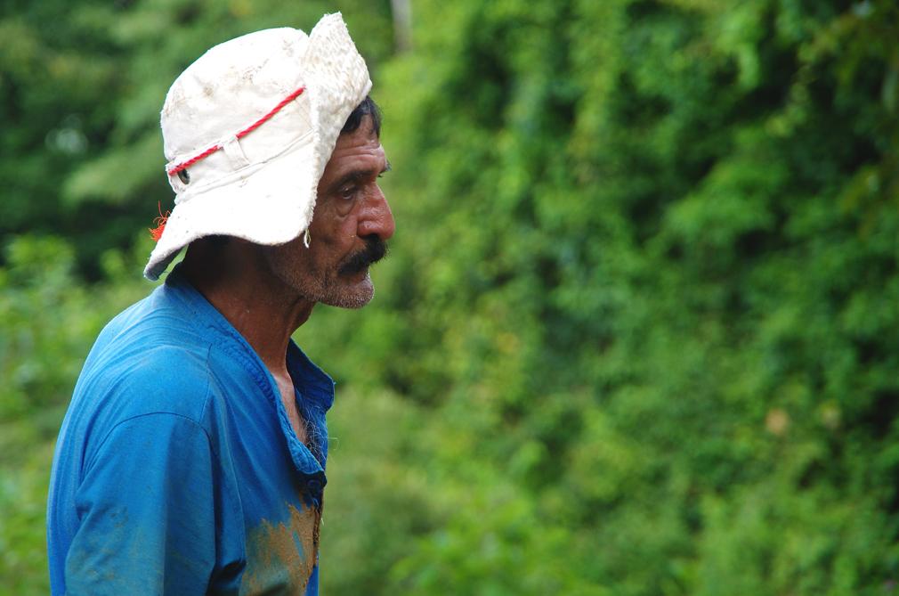 Costa Rica : péon pensif !