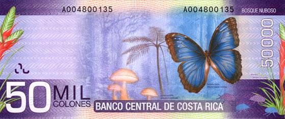 Billet de 50.000 CRC : écosystème forêt de nuage (cloudforest)