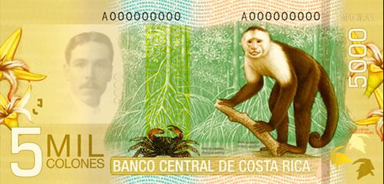Billet de 5.000 CRC : écosystème mangrove