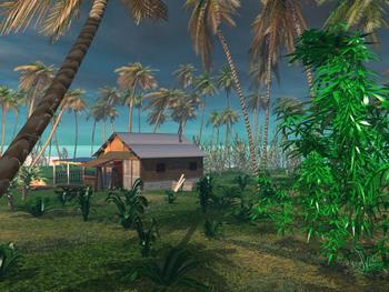Cabane sur la plage au Costa Rica