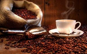 Café en grain du Costa Rica, sac et tasse
