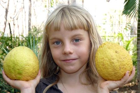 2 citrus de type limon lima dans les mains d'Anna