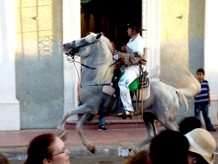 Fiesta Hippica de Granada 2012 - Photo 12