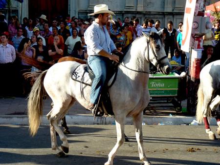 Fiesta Hippica de Granada 2012 - Photo 2