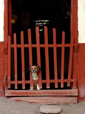 Nicaragua, Granada - Porte 12