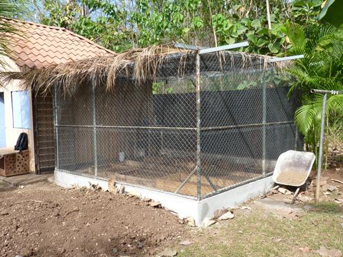 Potager au Costa Rica vu de l'extérieur