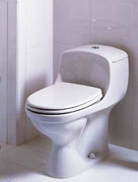 Plus de renseignements en immobilier, c'est photo des toilettes !